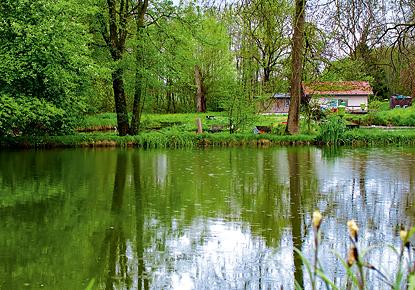 Fischzucht Birnbaum